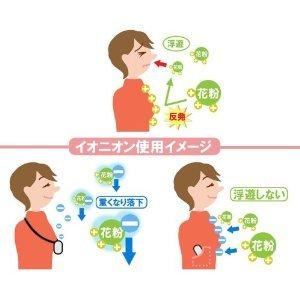 イオニオンEX3.jpg